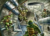 TMNT_brother_team_by_Romax25.jpg