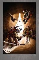 Нажмите на изображение для увеличения Название: Teenage Mutant Ninja Turtles - The IDW Collection - c084x5 (v12) - p097 [Digital-HD] [danke-Empi.jpg Просмотров: 3 Размер:1,03 Мб ID:162091
