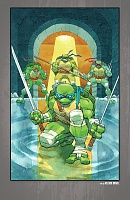 Нажмите на изображение для увеличения Название: Teenage Mutant Ninja Turtles - The IDW Collection - c085x1 (v12) - p145 [Digital-HD] [danke-Empi.jpg Просмотров: 1 Размер:1,65 Мб ID:162095