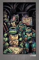 Нажмите на изображение для увеличения Название: Teenage Mutant Ninja Turtles - The IDW Collection - c086 (v12) - p167 [Digital-HD] [danke-Empire.jpg Просмотров: 1 Размер:2,00 Мб ID:162097