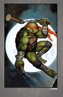 Нажмите на изображение для увеличения Название: Teenage Mutant Ninja Turtles - The IDW Collection - c089 (v12) - p386 [Digital-HD] [danke-Empire.jpg Просмотров: 1 Размер:684,3 Кб ID:162106