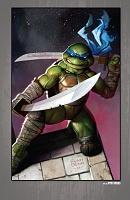Нажмите на изображение для увеличения Название: Teenage Mutant Ninja Turtles - The IDW Collection - c089 (v12) - p387 [Digital-HD] [danke-Empire.jpg Просмотров: 1 Размер:752,2 Кб ID:162107