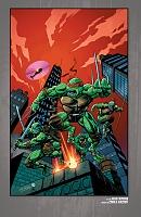 Нажмите на изображение для увеличения Название: Teenage Mutant Ninja Turtles - The IDW Collection - c089 (v12) - p388 [Digital-HD] [danke-Empire.jpg Просмотров: 1 Размер:1,21 Мб ID:162108