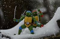 Нажмите на изображение для увеличения Название: Snow Raph Leo.jpg Просмотров: 5 Размер:525,7 Кб ID:149174